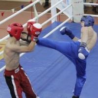 В Омске наградили победителей по кикбоксингу