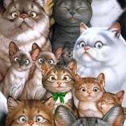 В Омске пройдет «Котофест: 303 кота в музее»