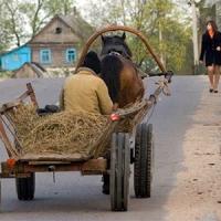 В Омской области может появиться новый туристический транспорт